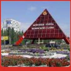 Прямой телефонный городской номер Воронежа